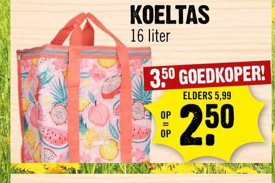 Dirck III Koeltas 16 Liter