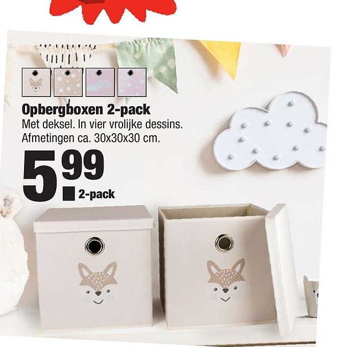 ALDI Opbergboxen 2-Pack
