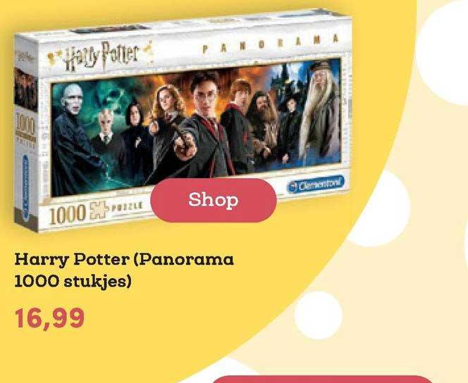 BookSpot Harry Potter (Panorama 1000 Stukjes)