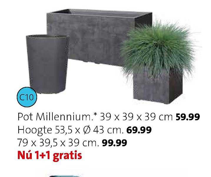 Intratuin Pot Millennium 39x39x39 Cm