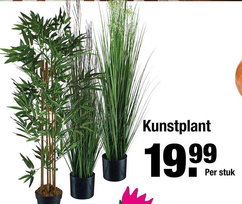 ALDI Kunstplant