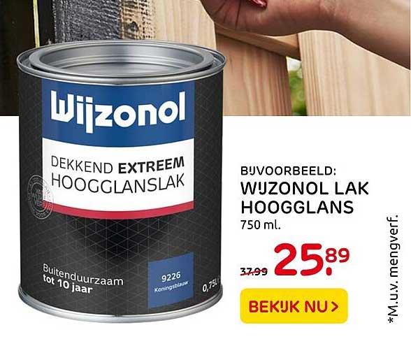 Praxis Wijzonol Lak Hoogglans
