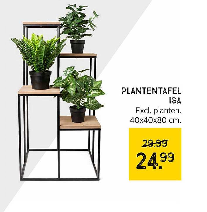 Xenos Plantentafel Isa