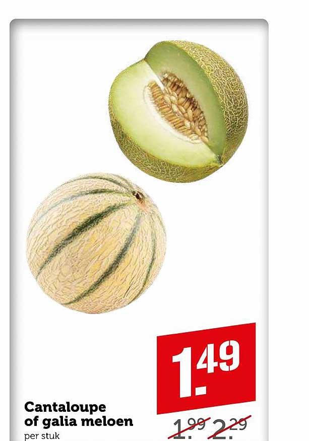Coop Cantaloupe Of Galia Meloen