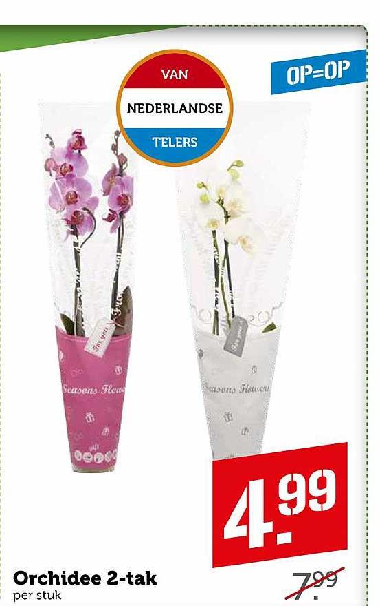 Coop Orchidee 2-Tak