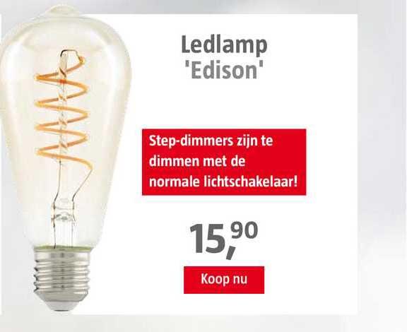 BAUHAUS Ledlamp 'Edison'