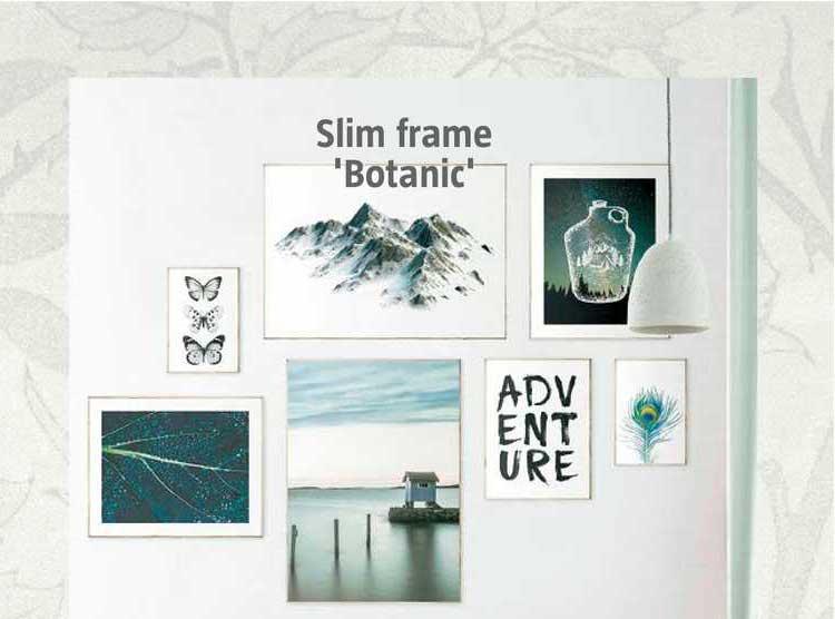 BAUHAUS Slim Frame 'Botanic'
