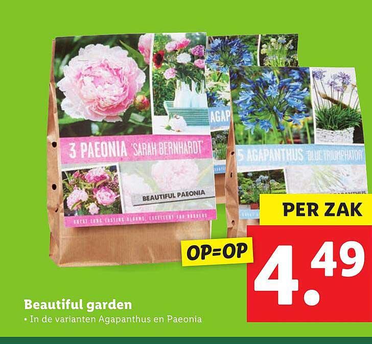 Lidl Beautiful Garden
