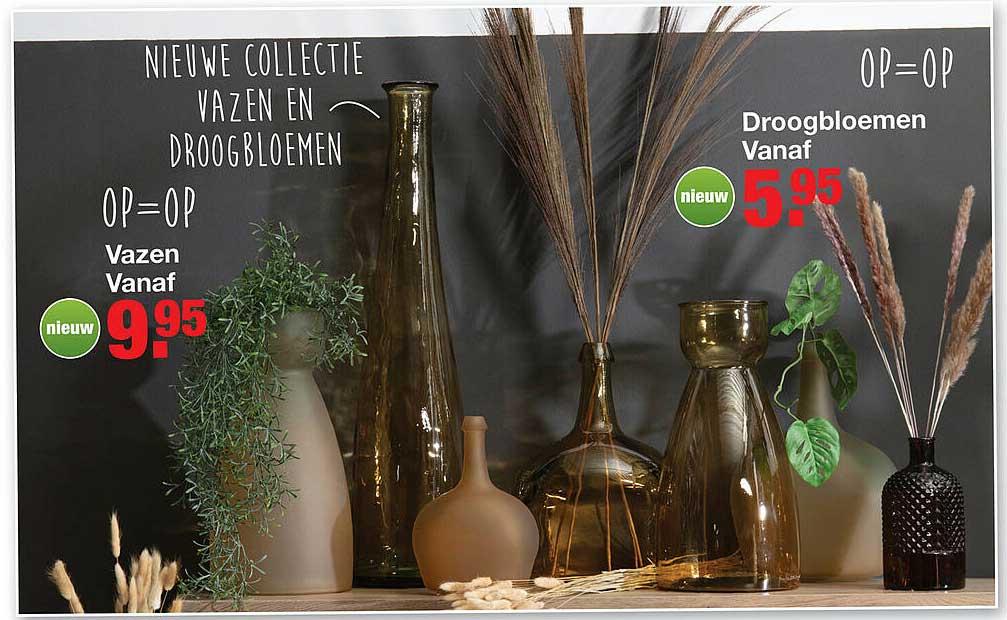 Budget Home Store Vazen Of Droogbloemen