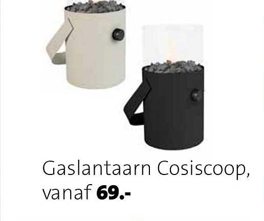 Intratuin Gaslantaarn Cosiscoop