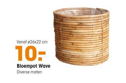 Kwantum Bloempot Wave