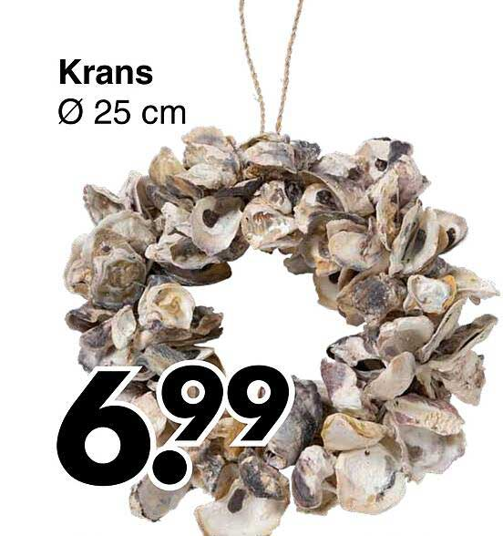 Wibra Krans Ø 25 Cm