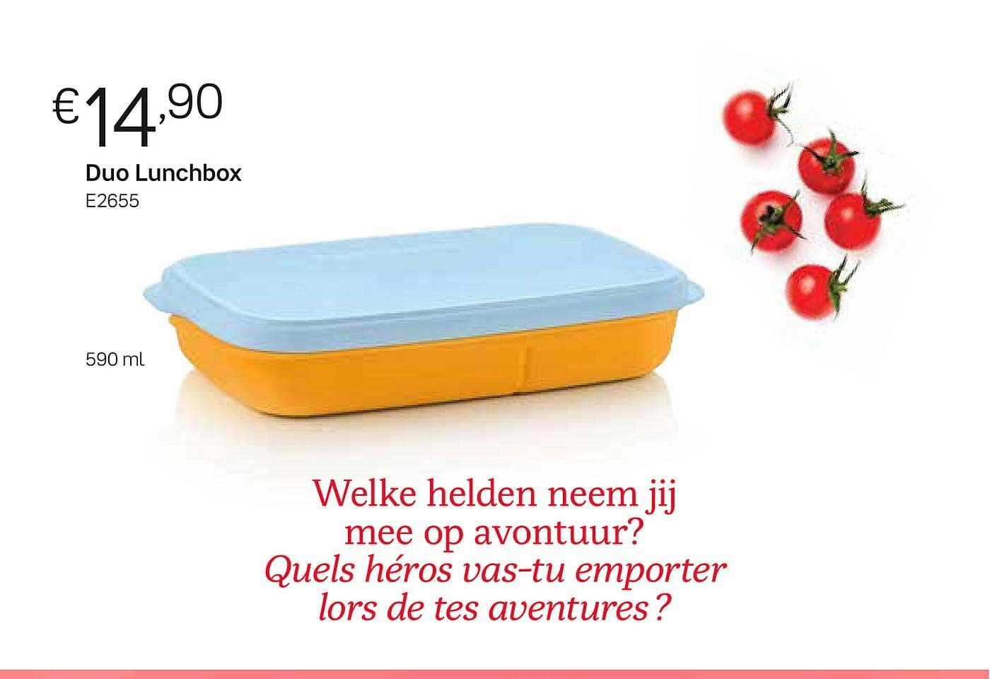 Tupperware Duo Lunchbox