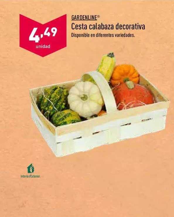ALDI Gardenline Cesta Calabaza Decorativa