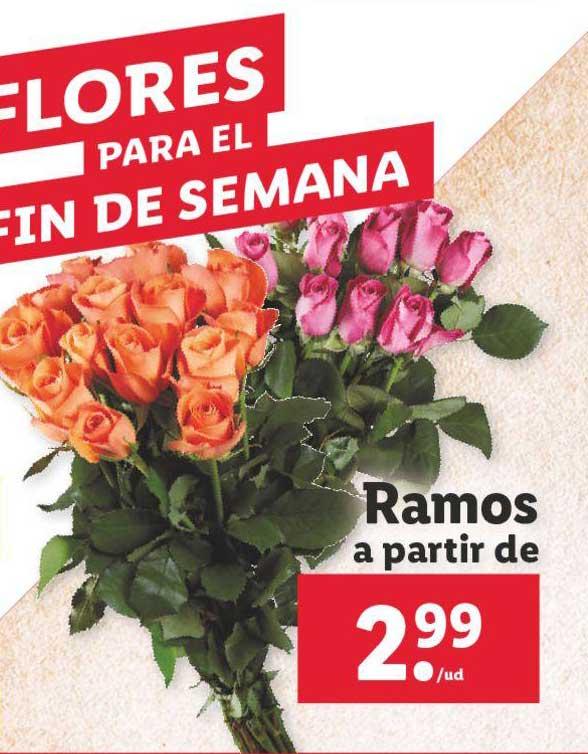 LIDL Flores Para El Fin De Semana