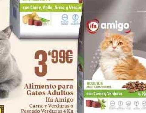 Gadis Alimento Para Gatos Adultos Ifa Amigo