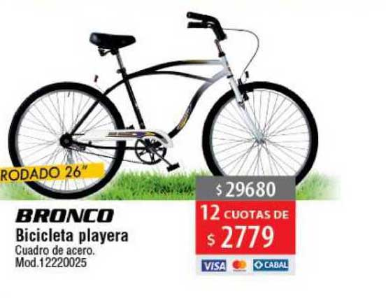 Casa Silvia Bronco Bicicleta Playera