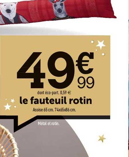 Centrakor Le Fauteuil Rotin