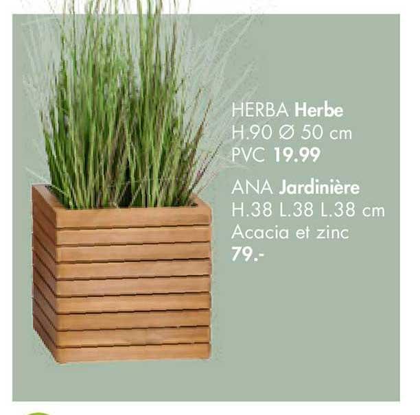 Casa Herbe Herba