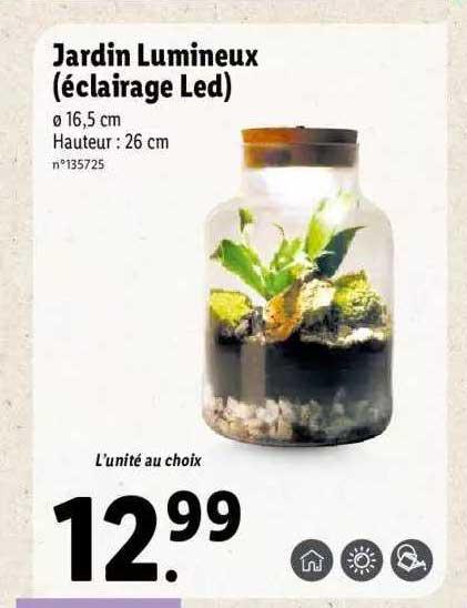 Lidl Jardin Lumineux (éclairage Led)