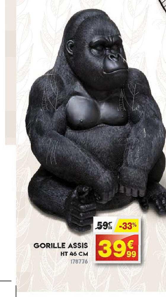 Maxi Bazar Gorille Assis