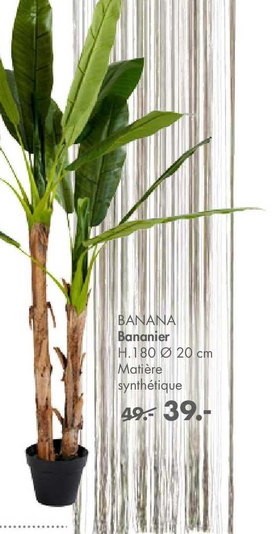 Casa Bananier Synthétique Banana