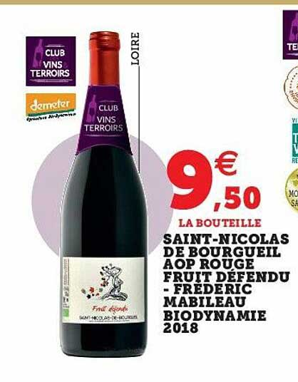 U Express Saint-nicolas De Bourgueil Aop Rouge Fruit Défendu - Frederic Mabileau Biodynamie 2018