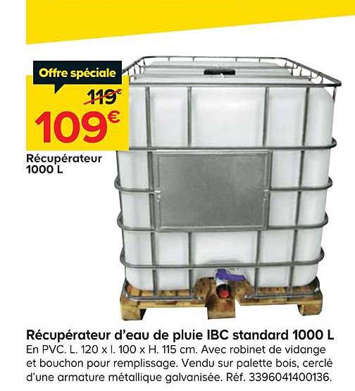 Offre Recuperateur D Eau De Pluie Ibc Standard 1000 L Chez Castorama