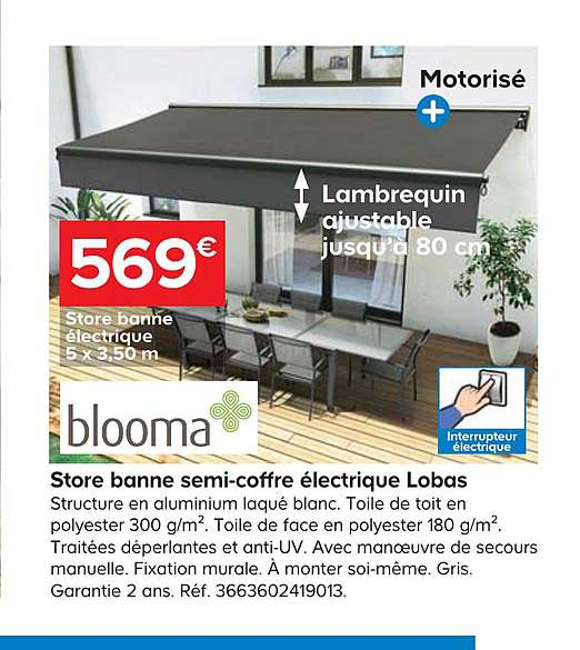 Castorama Store Banne Semi Coffre électrique Lobas Blooma