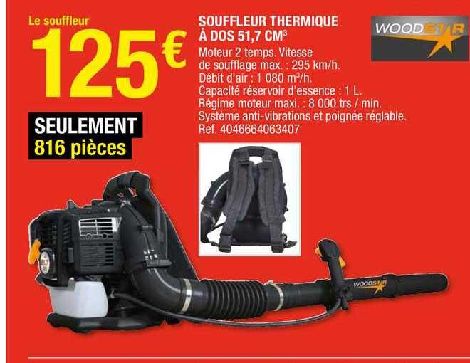 Brico Dépôt Souffleur Thermique à Dos 51.7 Cm3 Woodstar