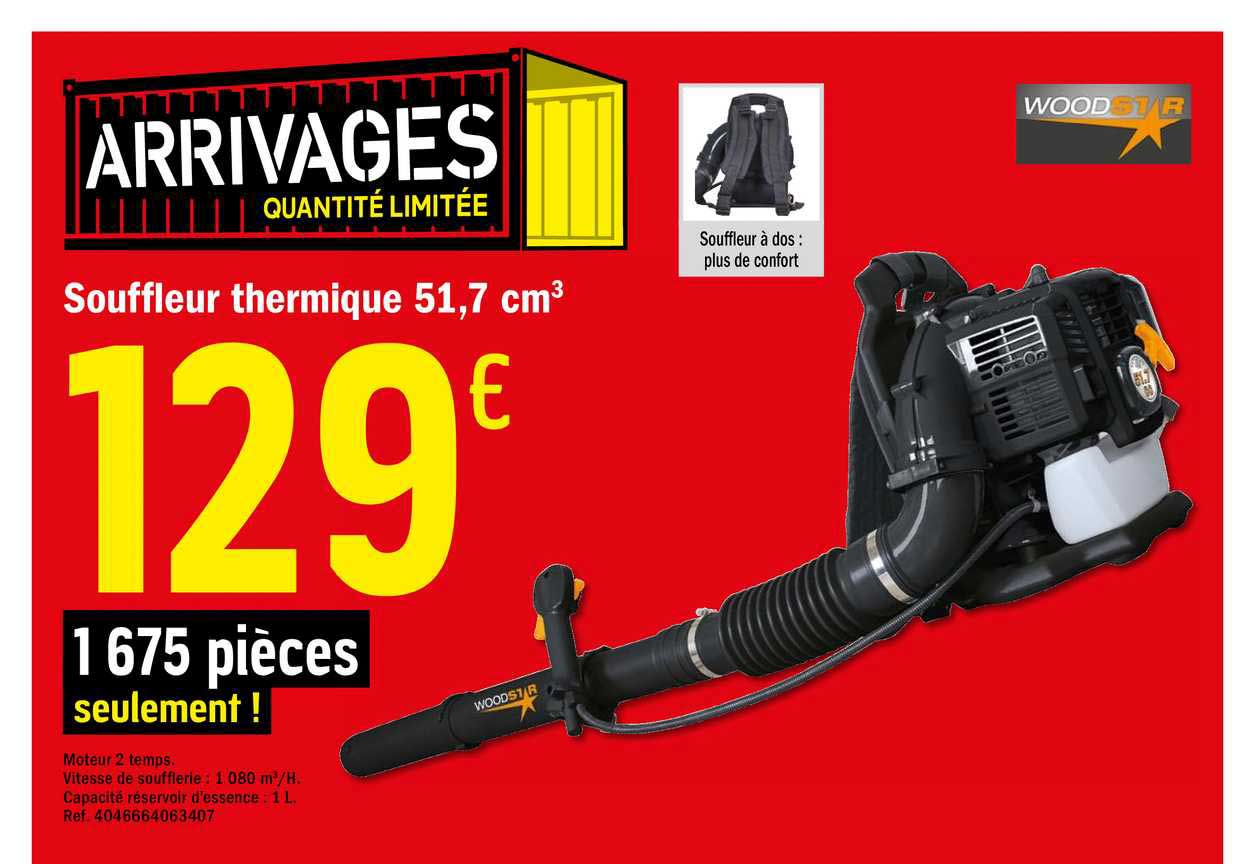 Brico Dépôt Souffleur Thermique 51.7 Cm3