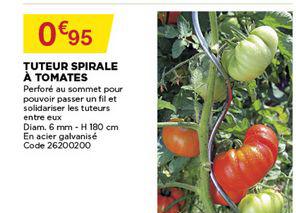 Bricomarché Tuteur Spirale à Tomates