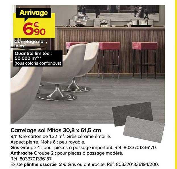 Castorama Carrelage Sol Mitos 30.8 X 61.5 Cm