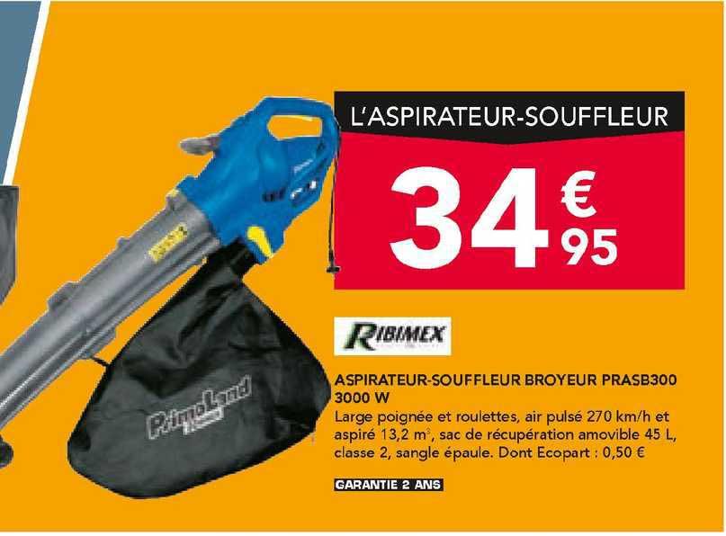 Les Briconautes Ribimex Aspirateur-souffleur Broyeur Prasb300 3000 W