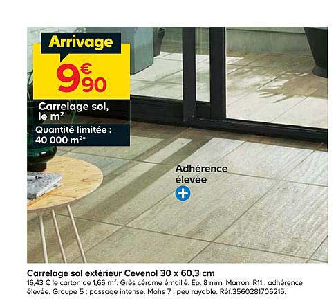 Offre Carrelage Sol Exterieur Cevenol 30 X 60 3 Cm Chez Castorama