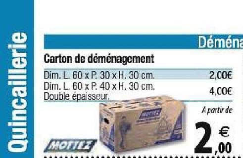 Tridôme Carton De Déménagement Mottez