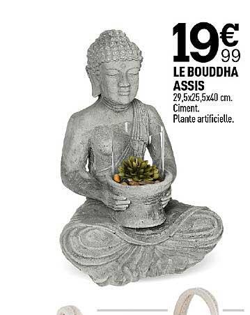 Centrakor Le Bouddha Assis