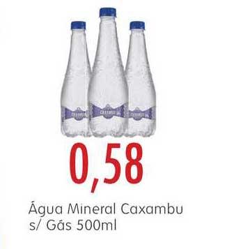 Epa água Mineral Caxambu S-gás 500ml